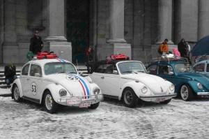 Love Bugs Parade (4)